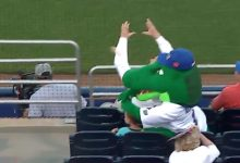 Florida mascot Albert saves small child by taking a baseball to his noggin
